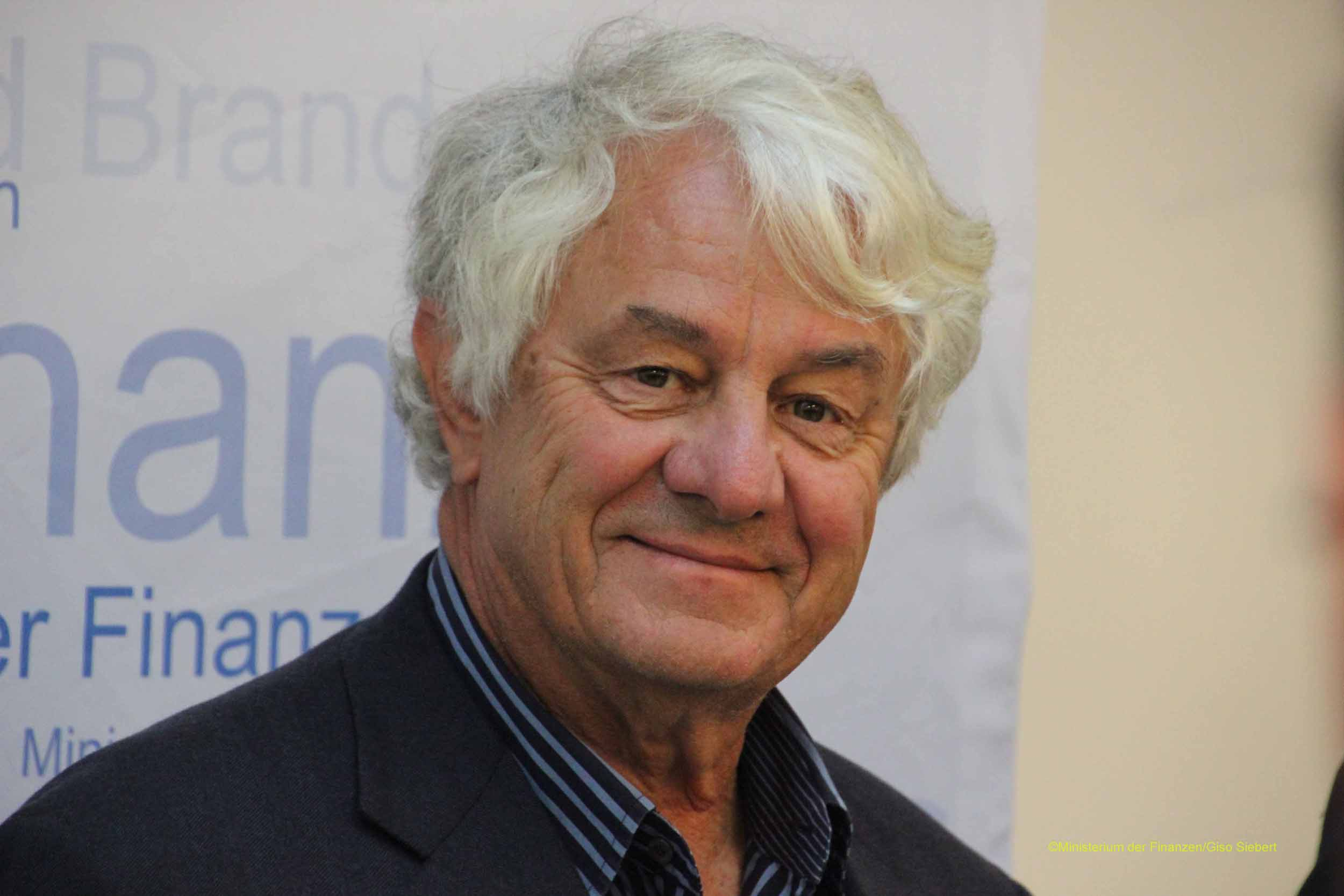 Hasso plattner Career